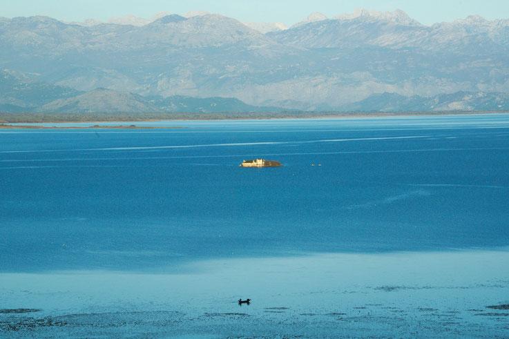Avec de l'eau, Lac de Skadar, Monténégro