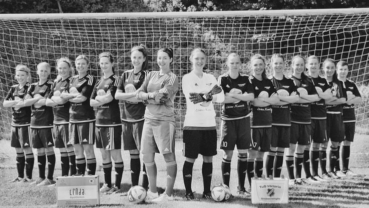 Die Hessenliga-Mannschaft des Tus Viktoria Großenenglis