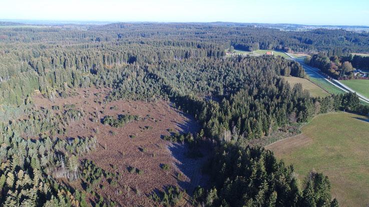 Luftbild Ebenbergfilz, Foto: Kopka