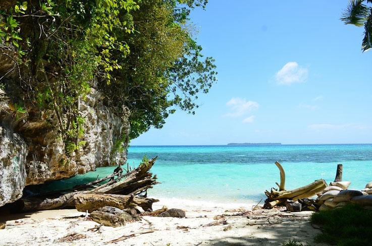 Palau reef safe sunscreens
