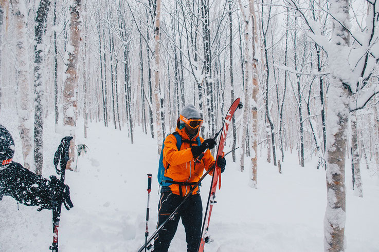 Otoe-Powder-Cat-Ski-Hokkaido-Japan