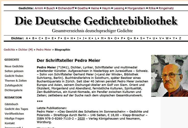 Pedro Meier – Die Deutsche Gedichte-Bibliothek. Gedichte.xbib.de. Pedro Meier, Dichter, Lyriker, Schriftsteller AdS Autor. ViceversaLiteratur.ch – Bücher: Das Gewicht des Schattens im Sonnenschein – Parallelwelten. Literapedia Berner Schriftsteller Verein