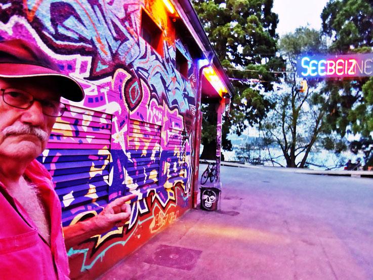 Pedro Meier SelfieArt – Lichterkette Pink – Rote Fabrik Kulturzentrum Shedhalle – Restaurant Ziegel oh Lac Zürich – 2016 © Pedro Meier Multimedia Artist MoMA Visual Art Museum Bangkok – FLUXUS – DADA – SIKART Zürich – Gerhard Meier Weg Niederbipp Bern