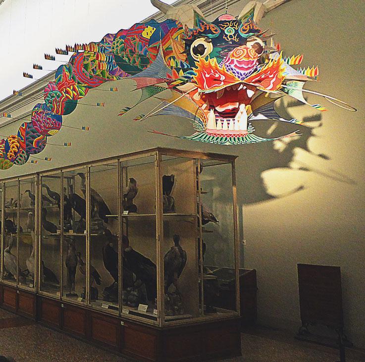 Pedro Meier – Ai Weiwei »With Wind« Chinese dragon – »D'ailleurs c'est toujours les autres« – Musée cantonal des Beaux-Arts Lausanne, (Uli Sigg – Bernard Fibicher) – 2017 Photo: Pedro Meier Multimedia Art, Gerhard Meier Weg Niederbipp – Bangkok