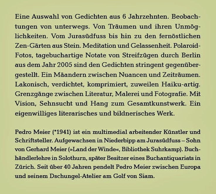 Pedro Meier Schriftsteller – Klappentext zu: Das Gewicht des Schattens im Sonnenschein – Gedichte und Polaroids von Berlin – ISBN 978-3-8260-7110-2 – Verlag Königshausen & Neumann, Würzburg, 2020 – BuchCover: Himmel über Berlin – Lyrik aus 6 Jahrzehnten
