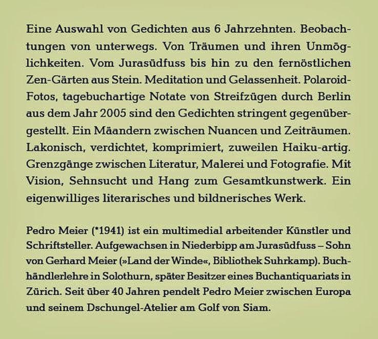 Pedro Meier – Klappentext zu: Das Gewicht des Schattens im Sonnenschein – Gedichte und Polaroids – ISBN 978-3-8260-7110-2. Rückseitentext. Verlag Königshausen & Neumann, Würzburg – Erscheint zur Frankfurter Buchmesse 2020 – BuchCover: Himmel über Berlin