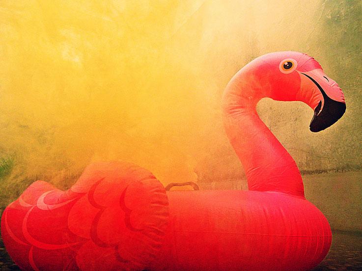 Pedro Meier Yellow Colour Smoke Bomb Action »Pink Flamingo«, Rauch Performance. Uferpark Campus Attisholz Areal Solothurn, Kantine 1881, © by Pedro Meier Multimedia Artist Niederbipp. Kunsthalle Olten. Bangkok Art Group BACC Visarte. Lexikon SIKART Zürich