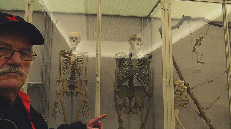 Pedro Meier – Ai Weiwei – »Selfie-Art-Project with Skeletons of humans and monkeys« – »D'ailleurs c'est toujours les autres«, Musée cantonal des Beaux-Arts (Uli Sigg – Bernard Fibicher), Pedro Meier Multimedia Artist Gerhard Meier Weg Niederbipp – Bangkok