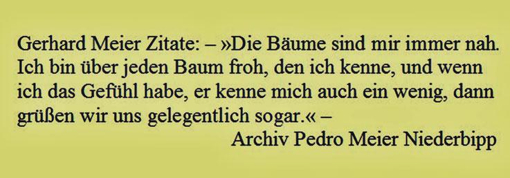 Gerhard Meier Zitat – »Die Bäume sind mir immer nah. Ich bin über jeden Baum froh, den ich kenne, und wenn ich das Gefühl habe, er kenne mich auch ein wenig...« – aus: »Das dunkle Fest des Lebens«, Werner Morlang, Suhrkamp – Archiv Pedro Meier Niederbipp