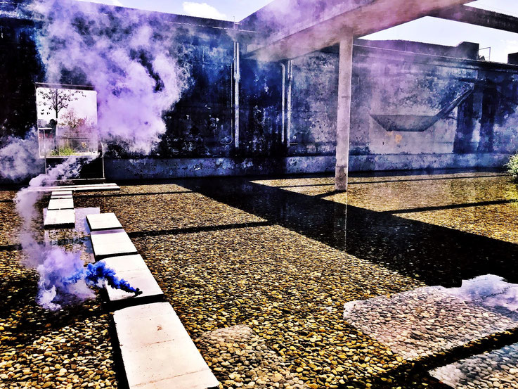 Pedro Meier Uferpark, Blue Colour Smoke Bomb Action »Pink Flamingo«, Rauch Performance. Campus Attisholz Areal, Kantine 1881, Luterbach © by Pedro Meier Multimedia Artist Niederbipp. Kunsthalle Olten. Bangkok Art Group BACC. Visarte. Lexikon SIKART Zürich