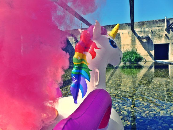 Pedro Meier »Weisses Einhorn«, Pink Colour Smoke Bomb Action Rauch Performance. Uferpark Campus Attisholz Areal Solothurn, Kantine 1881 © by Pedro Meier Multimedia Artist Niederbipp. Kunsthalle Olten. Bangkok Art Group BACC Visarte. Lexikon SIKART Zürich