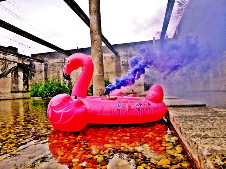 Pedro Meier Blue Colour Smoke Bomb Action »Pink Flamingo«, Rauch Performance. Uferpark Campus Attisholz Areal Solothurn, Kantine 1881, © by Pedro Meier Multimedia Artist Niederbipp. Kunsthalle Olten. Bangkok Art Group BACC Visarte. Lexikon SIKART Zürich