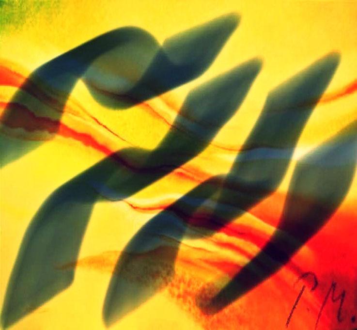Pedro Meier – Intervention in Schwarz – DigitalArt 2018 – Atelier: Gerhard Meier-Weg Niederbipp Bern / Solothurn  / Bangkok Thailand / Olten Kunsthalle – Visual Art Museum – Multimedia Artist – DiaryArt MailArt PhotoArt – FLUXUS DADA VISARTE SIKART Zürich