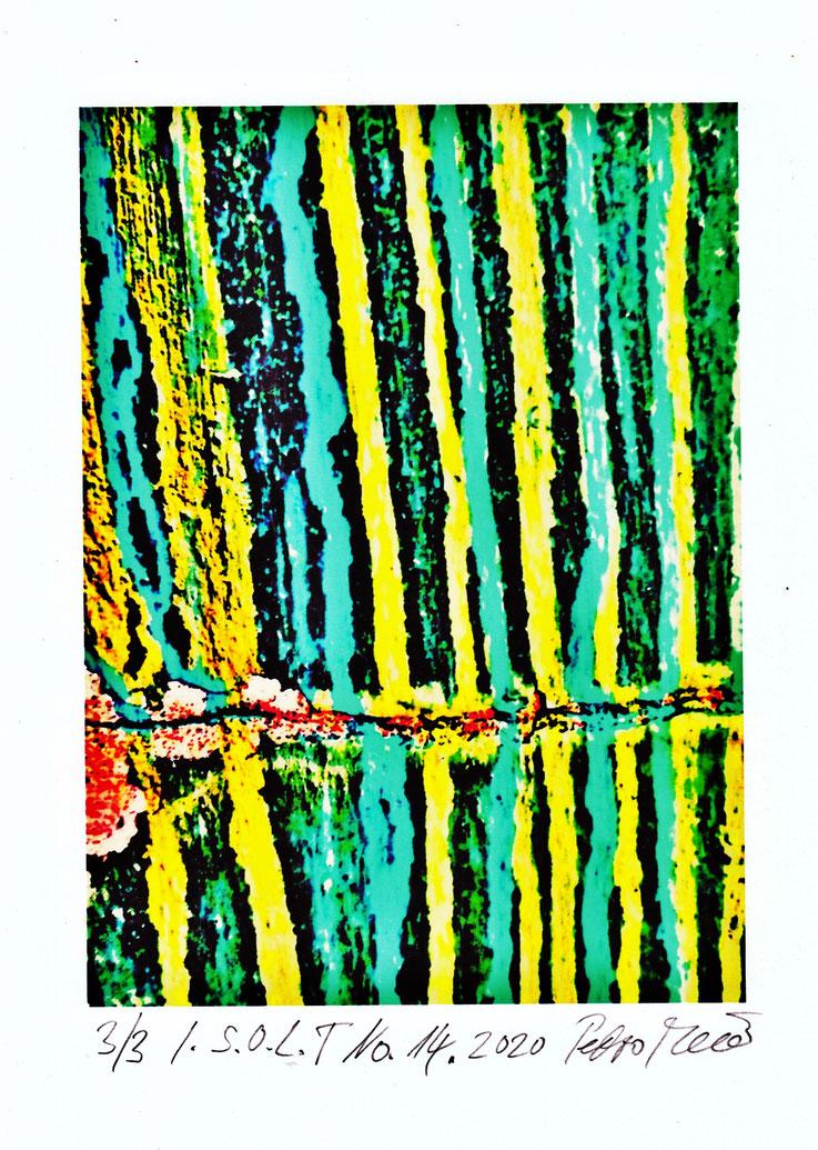 Pedro Meier in F. Hoffmann-La Roche Kunstsammlung Basel – Ankauf 2020, Grafik-Edition – In Search of Lost Time – Nr. 14, PigmentPrint. Vorlagen für das Lyrik-Buch von Pedro Meier – PARALLELWELTEN – Wasteland Factory oder Der Garten der Lüste, AMRAIN BOOKS