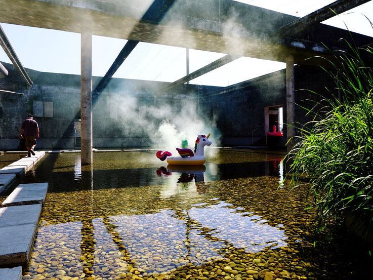 Pedro Meier White Colour Smoke Bomb Action »Weisses Einhorn«, Rauch Performance. Uferpark Campus Attisholz Areal Solothurn, Kantine 1881 © by Pedro Meier Multimedia Artist Niederbipp. Kunsthalle Olten. Bangkok Art Group BACC Visarte. Lexikon SIKART Zürich