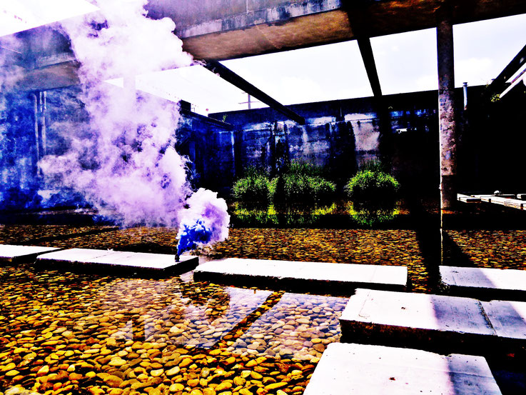 Pedro Meier Gone with the Wind, Uferpark, Blue Colour Smoke Bomb Action Campus Attisholz Areal »Pink Flamingo« Rauch Performance, Solothurn, Kantine 1881 © by Pedro Meier Multimedia Artist Niederbipp. Kunsthalle Olten. Bangkok BACC, Visarte, SIKART Zürich