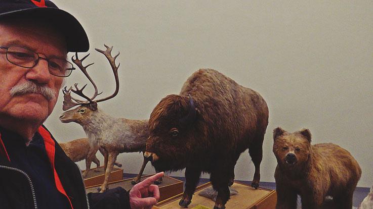 Pedro Meier – Ai Weiwei – »Selfie-Art-Project with very wild animals« – »D'ailleurs c'est toujours les autres«, Musée cantonal des Beaux-Arts (Uli Sigg – Bernard Fibicher) – Lausanne – Pedro Meier Multimedia Artist Gerhard Meier Weg Niederbipp – Bangkok