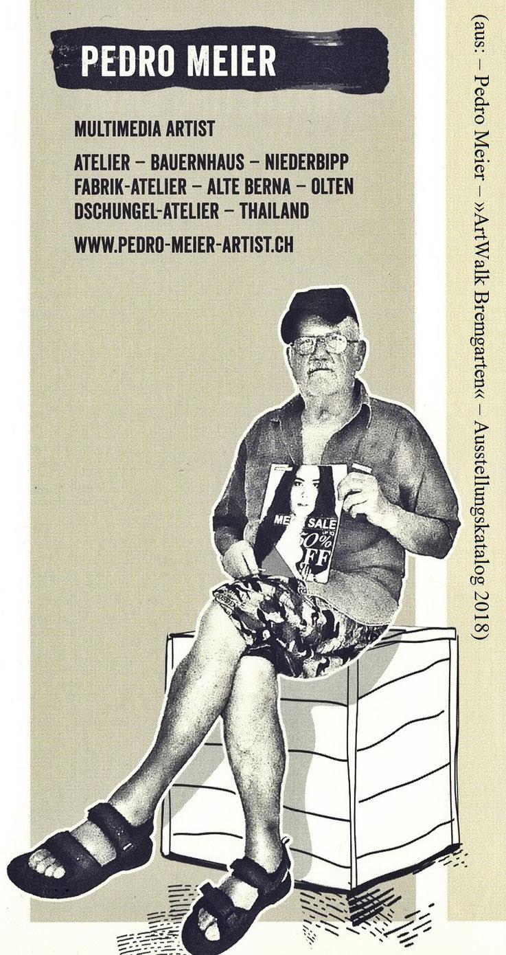 Pedro Meier »ArtWalk Bremgarten«. Ausstellungskatalog 2018 – Hotel Stadthof – Eröffnung: Rauchperformance »Smoke On The Water« in der Reuss beim Fällbaum, Casino, Bijou, Holzbrücke – in der Altstadt »Mikado-Skulptur«, Gerhard Meier-Weg Niederbipp, SIKART