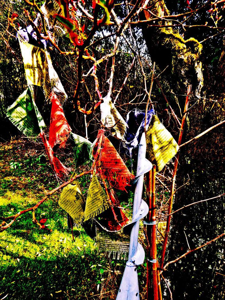 Pedro Meier – LandArt – »Wind-Skulptur« 2017 – Atelier-Garten – Gerhard Meier-Weg Niederbipp Amrain – Tibet Gebetsfahnen – Pedro Meier Multimedia Artist – DiaryArt – MailArt – DigitalArt – LandArt – Künstlerbuch – Bangkok MoMA – FLUXUS DADA, SIKART Zürich