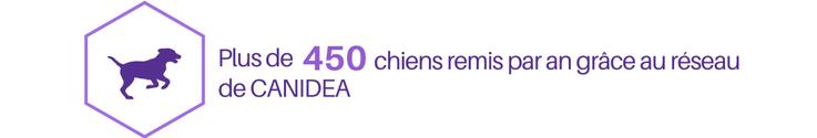 Plus de 450 chiens remis par an grâce au réseau de CANIDEA