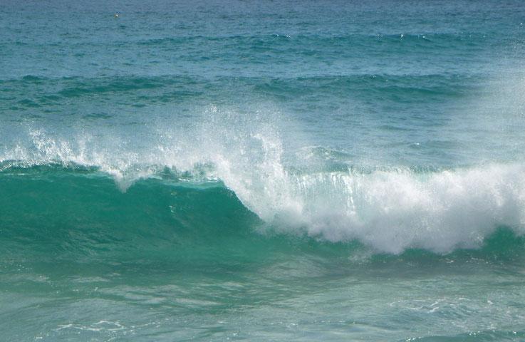 Bild: brechende Welle  vor Camp de Mar, Mallorca (Foto: Karena Hoffmann-Wülfing)
