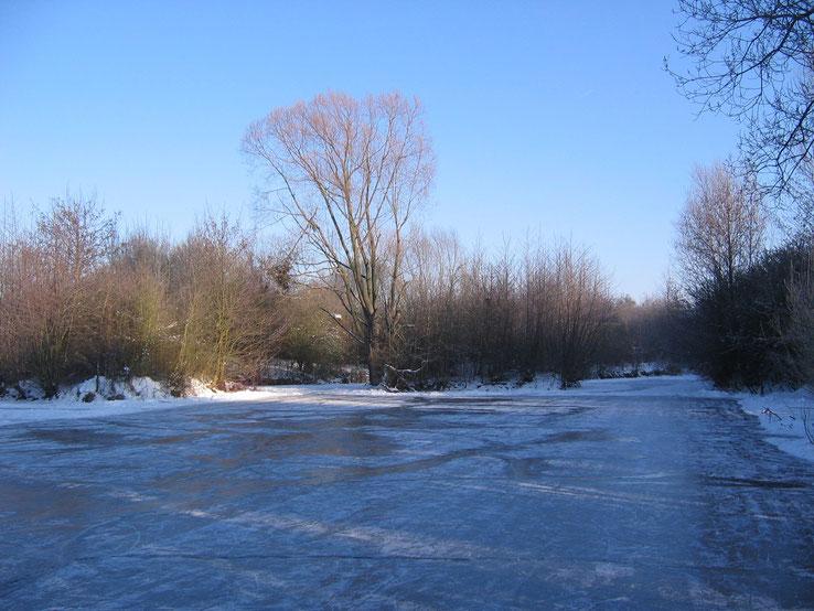 Litchkaut, Winter 2009