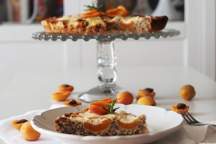 Aprikosenkuchen Backen mit Olivenöl Rezepte Oligarto Blogzine