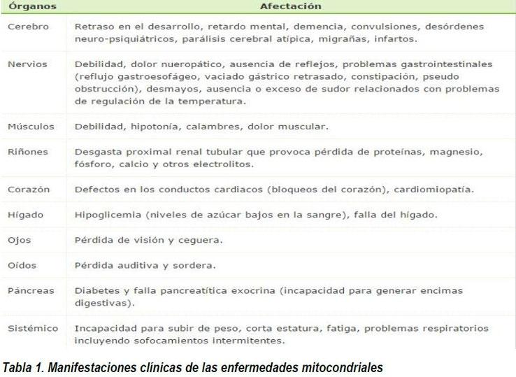Tomado de la Asociacion  de enfermos de patología mitocondrial. AEPMI