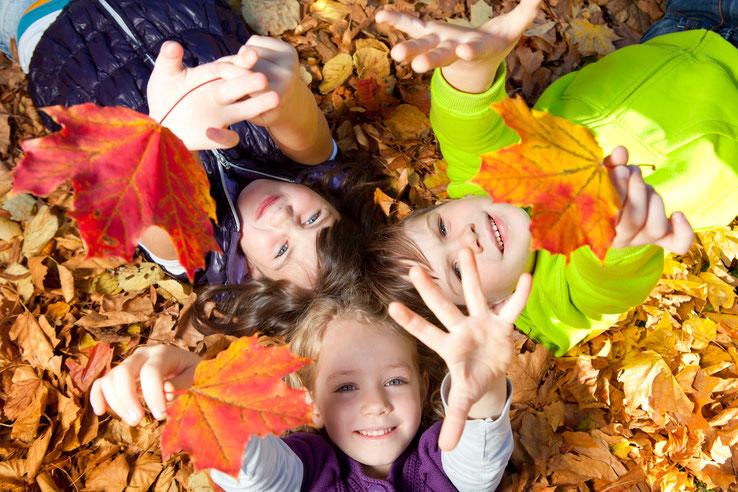 Den Herbst wahrnehmen - mit allen Sinnen