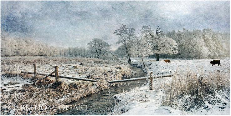 """""""Winterweiss - Panorama"""""""