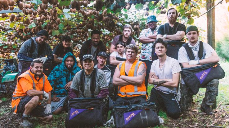 Kiwi Fruit Pick Team 2018
