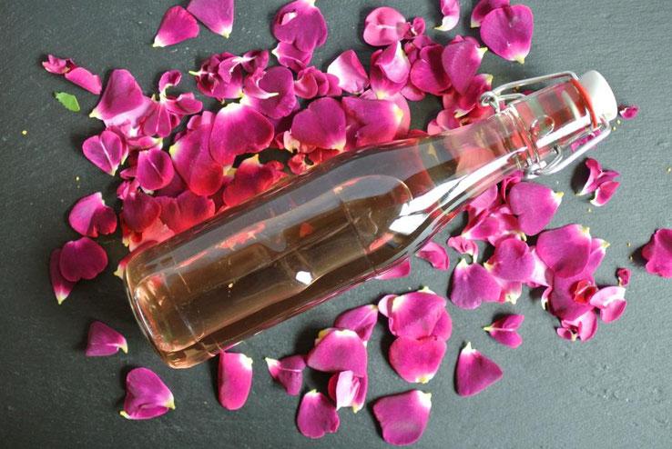 Rosensirup aus Rosen oder Heckenrosen