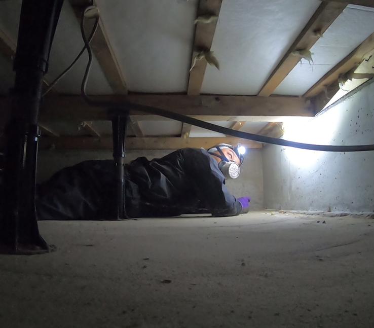 床下を点検している作業員
