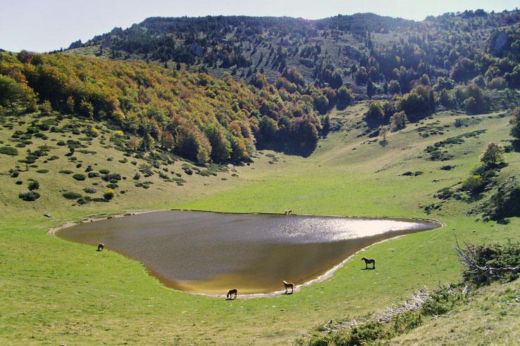 Campagna de Sault - Randonnée Pyrénées Audoiseses