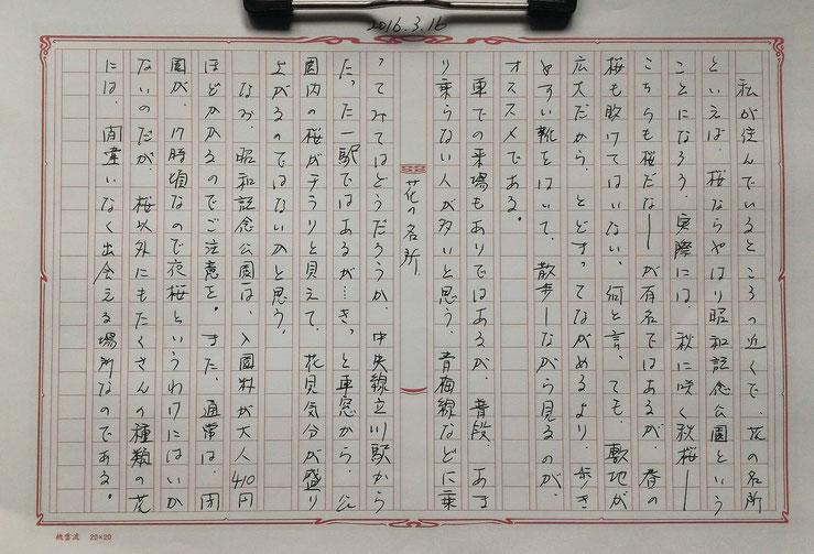 桜の名所といえば、昭和記念公園