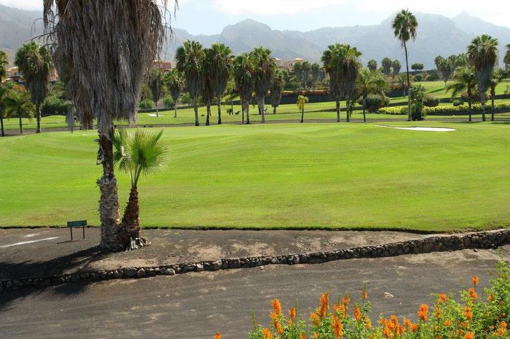 Blick auf den Golfplatz, der sich fast am Grundstück sich befindet.