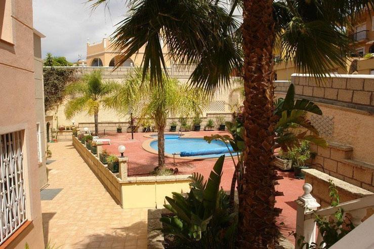 Innenhof vom Grundstück mit Poolbereich und Palmen.
