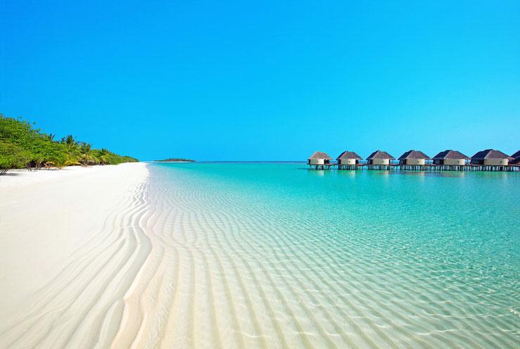 このまま温暖化が進むと国土の80%が 海に沈んでしまうモルディブの浜辺