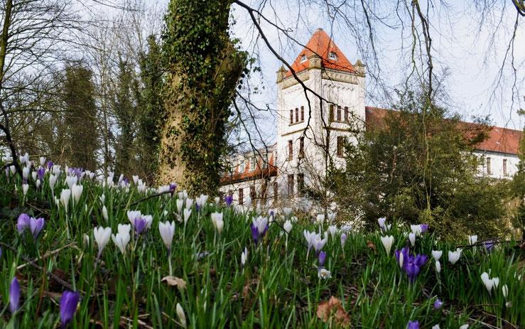 Aurich Schloss