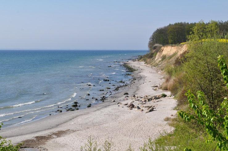 Steilküste in Grömitz