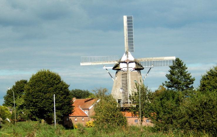Mühle Ostfriesland mitling-mark