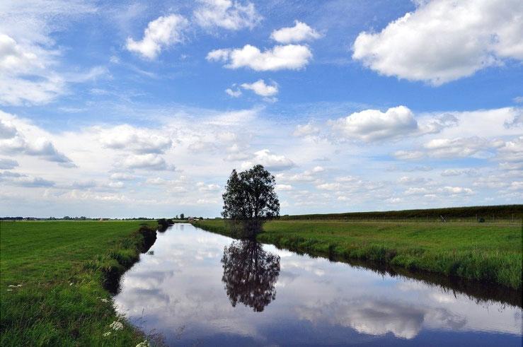 Mein Ostfriesland