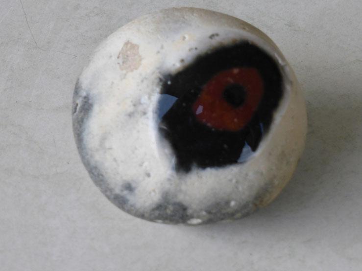 Das Auge.
