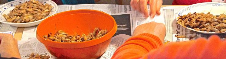 Krabben pulen