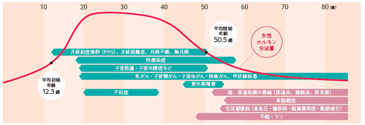 図:女性ホルモンの変化と起こりやすい病気