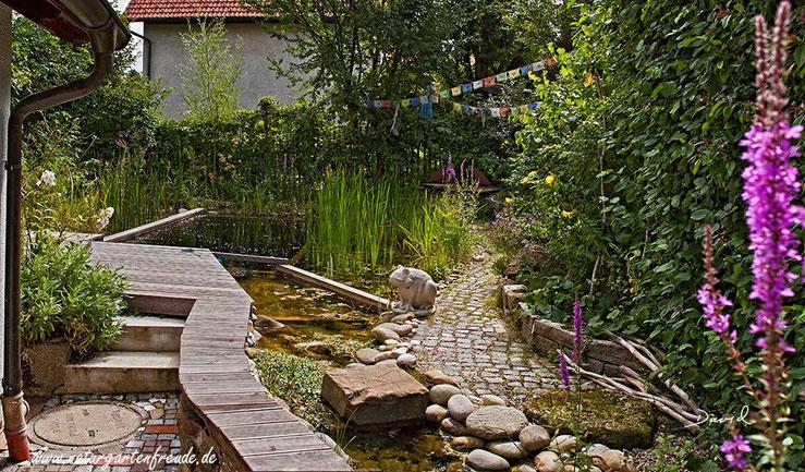 Schwimmteich Naturgarten Naturschwimmteich