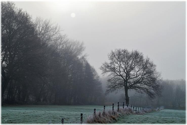 Ein eisiger Wintertag