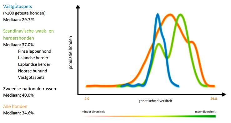 Tabel 1 De genetische diversiteit in de västgötaspets vergeleken met andere rassen (The Institute of Canine Biology)