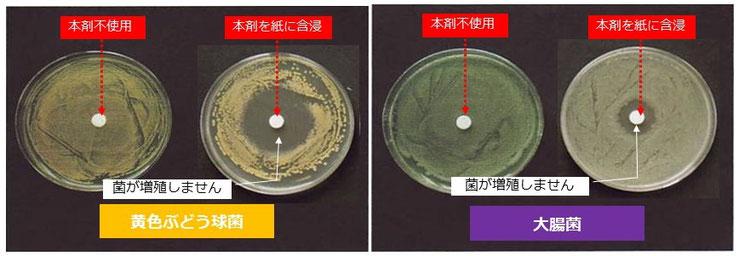 抗菌スプレー 除菌スプレー 赤ちゃん抗菌スプレー 赤ちゃん除菌スプレー ハイハイする床掃除