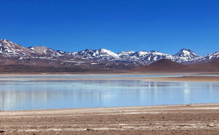 Laguna Blanca, nahe der chilenischen Grenze.